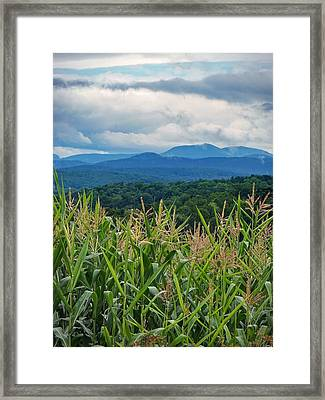 Framed Print featuring the photograph As High As An Elephants Eye by Kendall McKernon