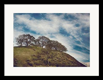 Mountaintop. Trees Framed Prints