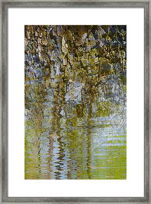 As If A Canopy Framed Print by Sean Holmquist
