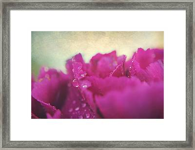 As Long As You're Here Framed Print by Laurie Search