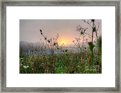 As Morning Comes Framed Print by Robert Pearson