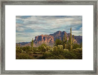 Framed Print featuring the photograph As The Evening Arrives In The Sonoran  by Saija Lehtonen