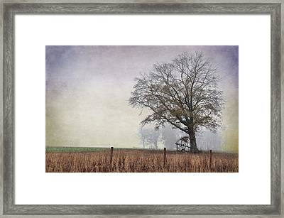 As The Fog Sets In Framed Print by Jan Amiss Photography