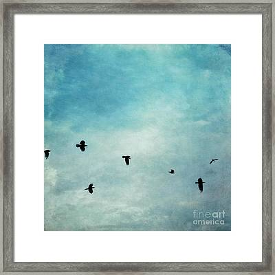 As The Ravens Fly Framed Print by Priska Wettstein