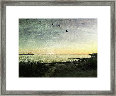 Framed Print featuring the photograph As The Sky Darkens  by Connie Handscomb