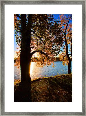 As The Sun Sets In Autumn Framed Print by Debbie Nobile