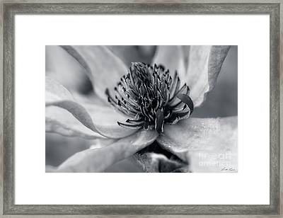 As Time Goes By Framed Print