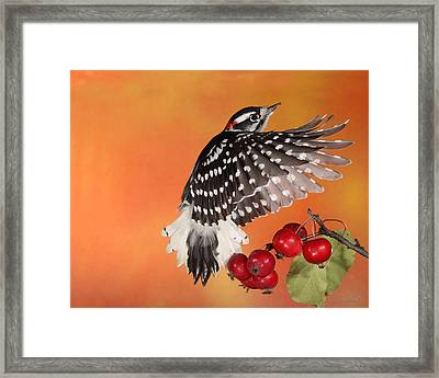 Ascending To New Heights Framed Print by Gerry Sibell