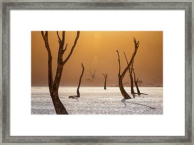 Ascension Framed Print by Fegari