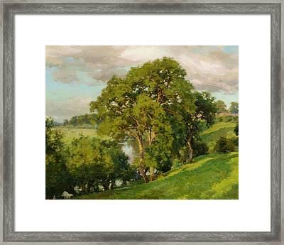 Ash Trees At Cropthorne Worcestershire Framed Print