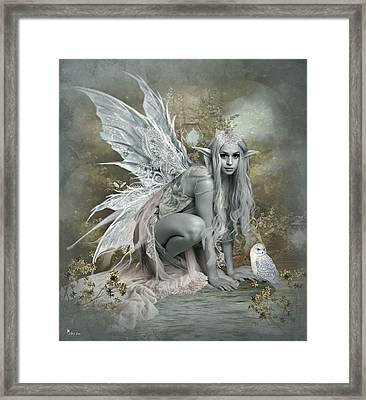 Ashen  Lace 2 Framed Print