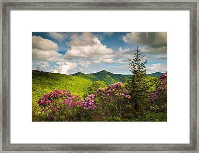 Asheville Nc Blue Ridge Parkway Pinnacle Framed Print
