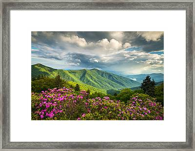 Asheville Nc Blue Ridge Parkway Spring Flowers Framed Print