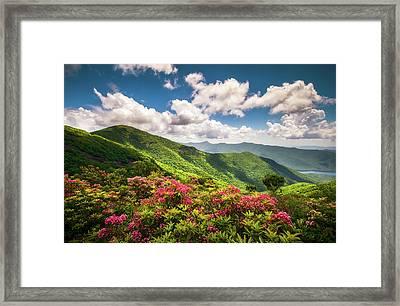 Asheville Nc Blue Ridge Parkway Spring Flowers Scenic Landscape Framed Print