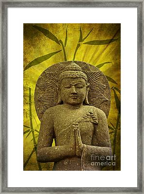 Asia Feeling Framed Print by Angela Doelling AD DESIGN Photo and PhotoArt