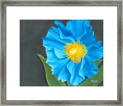 Asian Blue Framed Print by Laura Bell