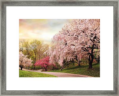 Asian Cherry Grove Framed Print by Jessica Jenney