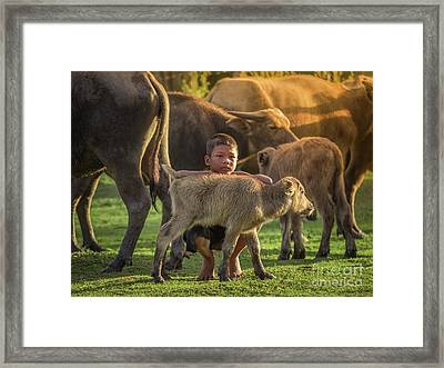 Framed Print featuring the photograph Asian Children And Buffalo At Countryside. by Tosporn Preede