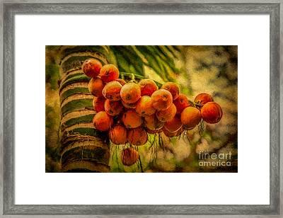 Asian Fruit Framed Print by Adrian Evans