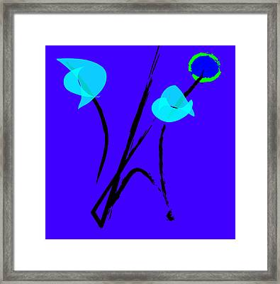 Asian Garden Framed Print by Susie Nelson