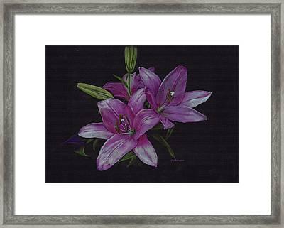 Asian Lillies Framed Print