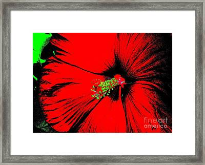 Asian Red Macro Hibiscuss Framed Print