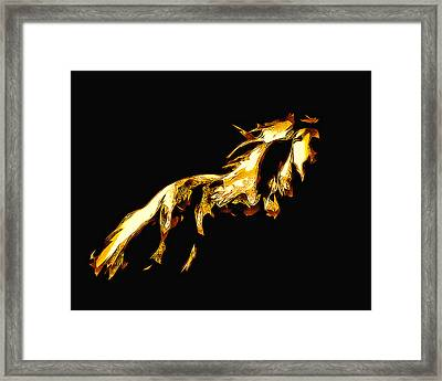 Asian Stallion Framed Print