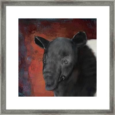 Asian Tapir Framed Print