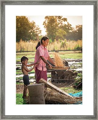 Asian Women Winnow Rice Rice Separate Between Rice And Rice Chaf Framed Print by Tosporn Preede