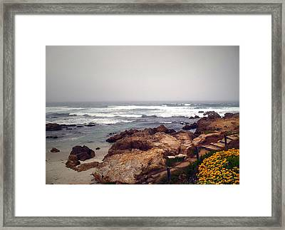 Asilomar Beach Pacific Grove Ca Usa Framed Print by Joyce Dickens