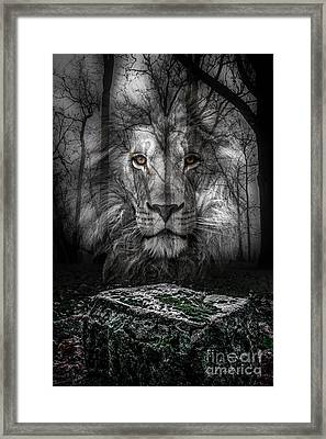 Aslan And The Stone Table Framed Print
