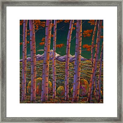 Aspen At Night Framed Print by Johnathan Harris