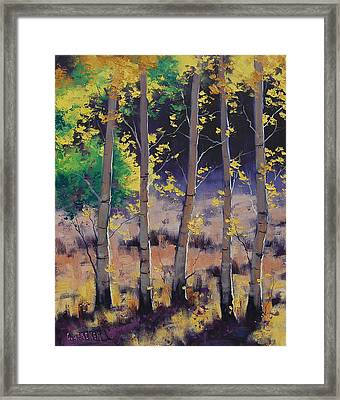 Aspen Colors Framed Print