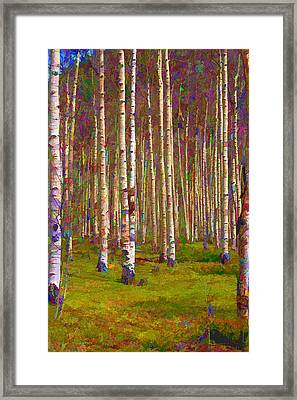 Aspen Dawn II Framed Print