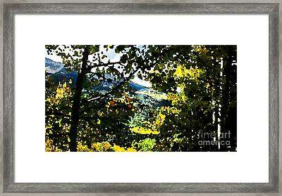Aspen Effect Framed Print