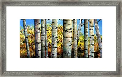 Aspen Eyes Framed Print