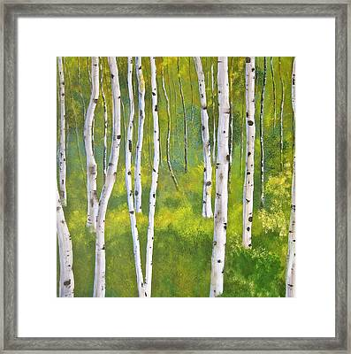 Aspen Forest Framed Print by Heather Matthews