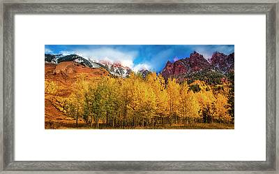 Framed Print featuring the photograph Aspen Grove by Andrew Soundarajan