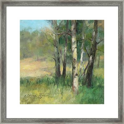Aspen Grove II Framed Print by Anna Rose Bain