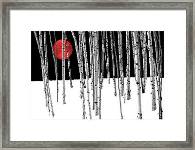 Aspen Grove Winter Framed Print
