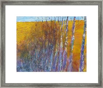 Aspen Framed Print by Helen Campbell