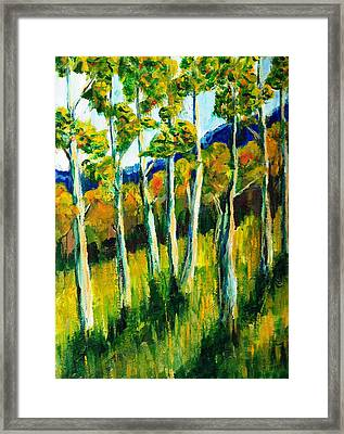 Aspen Highlands Framed Print by Randy Sprout