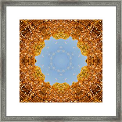 Framed Print featuring the photograph Aspen Kaleidoscope by Bill Barber