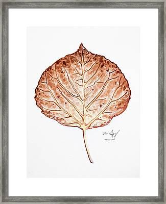 Aspen Leaf - Brown Framed Print