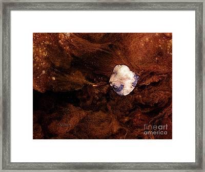 Aspen Leaf In Mud Wash Framed Print