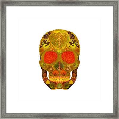 Aspen Leaf Skull 12 Framed Print by Agustin Goba