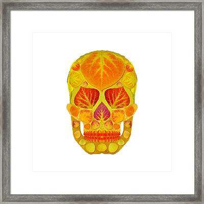 Aspen Leaf Skull 13 Framed Print by Agustin Goba