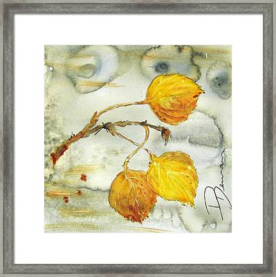Aspen Leaves Framed Print