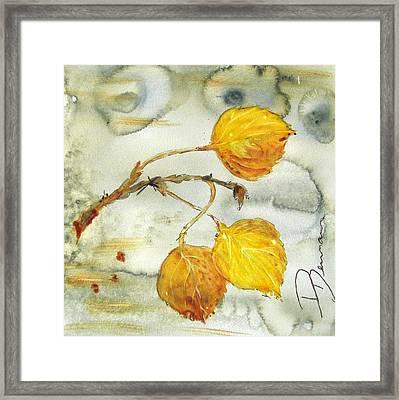Aspen Leaves Framed Print by Dawn Derman