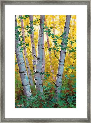 Aspen Light Framed Print by Graham Gercken